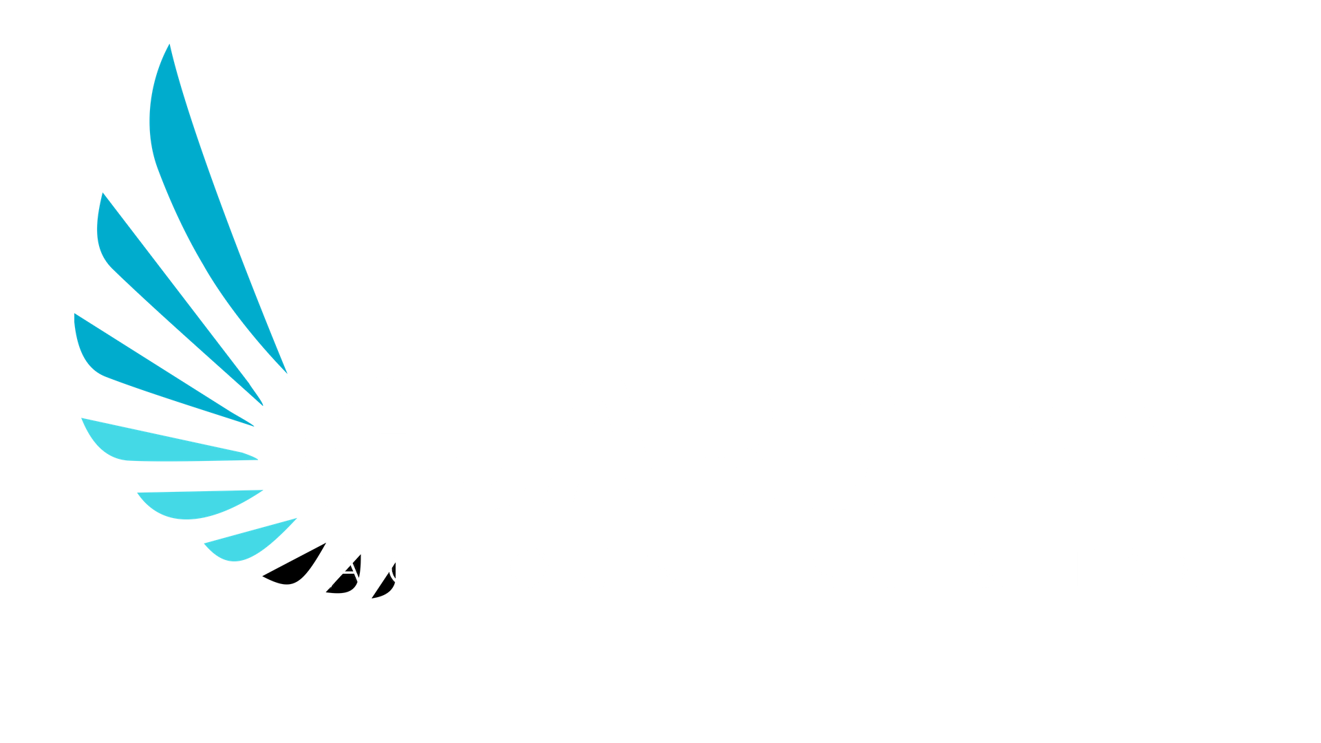 Guardian Accounting, Payroll & Tax Solutions